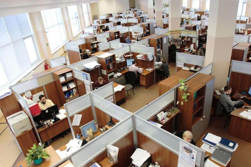 Your Best Employee, A Website
